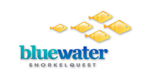 Bluewater Snorkelquest Logo Design