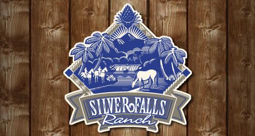 Silver Falls Logo Design