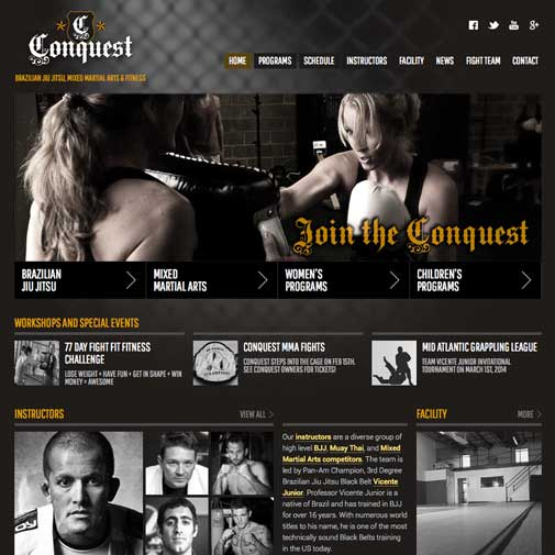 Conquest Website Design
