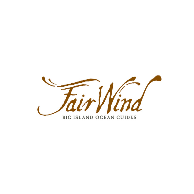 Fairwind Cruises Logo Design